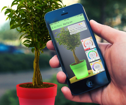 A mobile app for plant care.